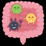カンジタ除菌中の食事療法