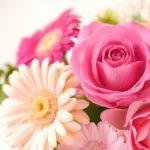 「美」と「健康」のためには副腎が大切な2つの理由